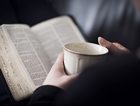 Bible_290x220